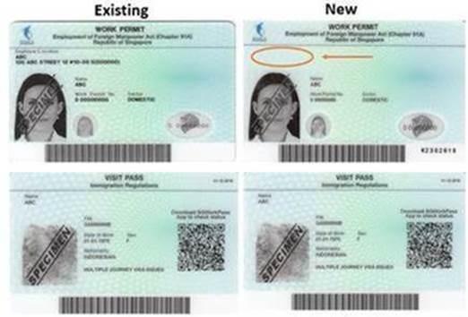 New Version Work Permit Card